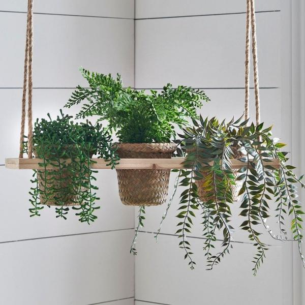 three plants on a hanging shelf
